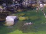 Swimming in the Mossman Gorge should be experienced by all