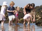 safe family rockpooling