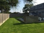The fenced-in back yard has ample space for kids, pets, and lots of outdoor fun!