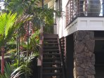 Lush/Tropical/Private Entrance to Guest Home.