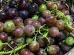 Uva prodotta in giardino a disposizione degli ospiti
