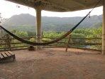 Terrace and hammock