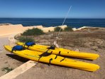 Ocean kayaks for guests' use