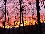 Incredible sunrises seen from the deck. This one was Valentine's Day '18. Perfect romantic getaway!