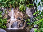 At more than 100 yard, the  Center Atrium has Tropical Gardens with a stream and waterfall.