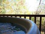 Cherokee Rose_Hot Tub