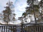 Waterfall, Scotts pines, winter view from the kitchen door