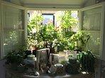 living room little roof garden