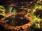 Koi pond lit at night