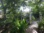 Enjoy the clay walkways and  measure of flowering plants like orchids ,iris ,ferns  and much more