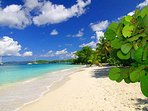 Can you imagine a beach this beautiful without a hotel on it? Imagine St. John.