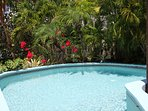 Gull Cottage's private pool enjoys a very tropical setting