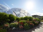 The Eden Project. Just the other side of town. Great day out for everyone.