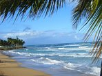 Welcome to La Pared Beach in Luquillo - Puerto Rico's center of east coast surfing!