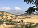 Glooiende heuvels van Andalusië