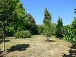 l'autre partie du jardin (où se trouvent  le portique et les terrains de volley et de pétanque)