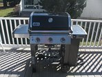 New Weber grill (connected directly to home gas supply)