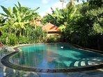 pool and sun bathing area