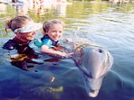 Swimming with Dolphins is a lifetime favorite memory