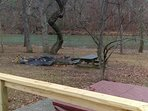fire pit area, picnic table,,,steps to the river