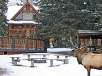 Set amidst pristine wilderness, experience a true winter wonderland
