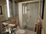 Guest Bath with Jacuzzi Steamer/Messager Shower