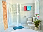 Huge luxury bathroom with shower, Jacuzzi, toilette and bidet.