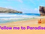 Discover the Wild Aruba