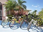 4 Bikes for your use to explore the quiet Four Mile Cove neighborhood & ecological park