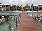 Huge FREE T-Dock