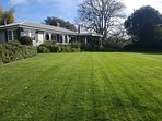I love this lawn. You will too