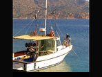 We can assist you to organize a day trip for sport fishing !