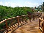 Jungle walkway to Pool and Beach