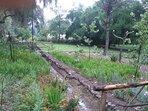 Jardín con la acequia de riego.