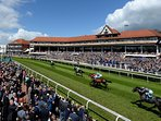 Chester Racecourse 5 minute walk from apartment