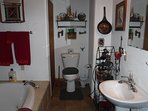 Wildlife / Indian bathroom double jacuzzi / shower