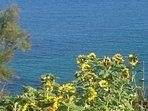 Espectacular vista of the Headlands
