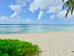 Palm beach - 4 or 5 minutes walk from Harts
