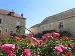 vue sur la cour, rosiers en pleine fleurs - les logis de la rimbertiere - thuré 86 - futuroscope