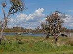 Across the garden to the Beaulieu River