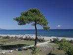 Adonis Borgo Beach