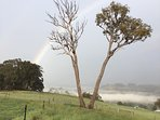 4 seasons in a day, old and new, and the mist creeping up the valley