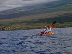 Enjoy ocean kayaking and whale watching in season (December to April)
