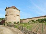 2 bedroom Villa in Sermizelles, Bourgogne-Franche-Comté, France : ref 5061809