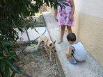 Villetta in campagna, relax e aria pulita, ideale peri i piccoli