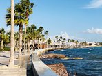 Take a stroll along the lovely sea front promenade and have lunch or coffee