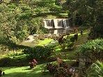 Stone Garden looks like a fairy tale