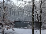 Winter, our private pond