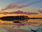 Stunning views of the Greyabbey Islands in Strangford Lough - accessed at low tide