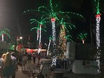 Holidays in Key West!